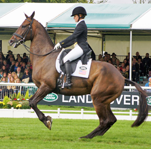 A strange environment on competition day can negatively affect a horse's performance.