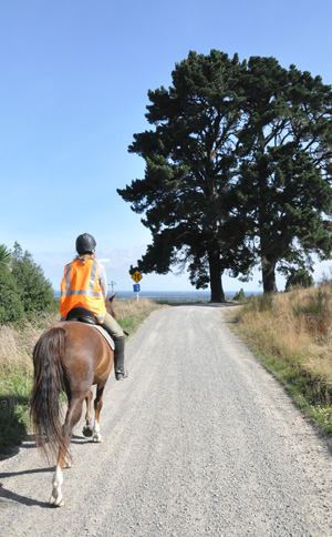 riding-trails