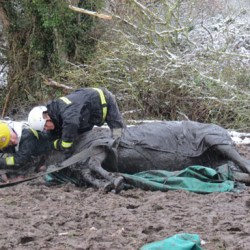 Chant was completely still when she was extracted from the ditch, raising fears she had been badly injured.
