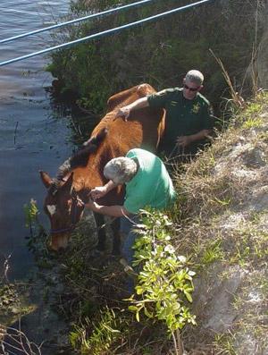 florida-river-rescue2
