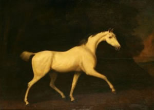 """""""A grey horse, apparently belonging to Lord Westmorland"""", signed George Stubbs. (1786)"""