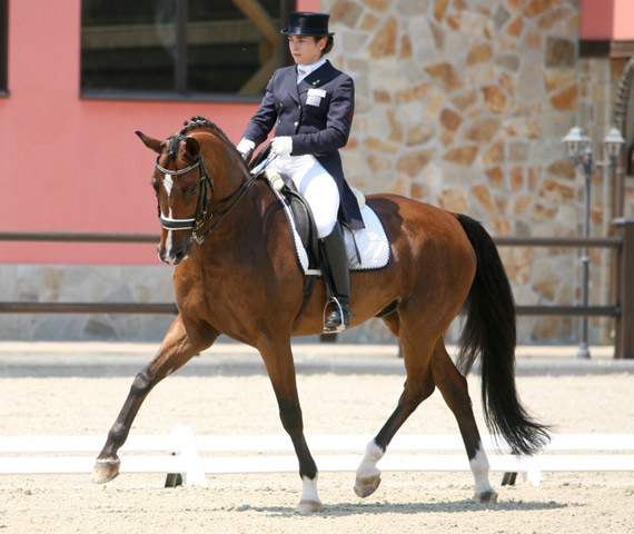 Angela Sklavounos and Quanderas from Greece scooped Senior Individual gold at the FEI Balkan Dressage Championships 2013 in Yagodovo, Bulgaria.