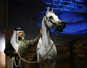 Opened in 2010 at the park, the Al-Marah Arabian Horse Gallery utilizes both interactive technology and historical art and artifacts to teach visitors about the history of the Arabian horse.
