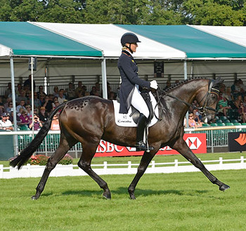 Ingrid Klimke and FRH Butts Abraxxas produce a superb test to take the lead after the first day of dressage at Burghley.