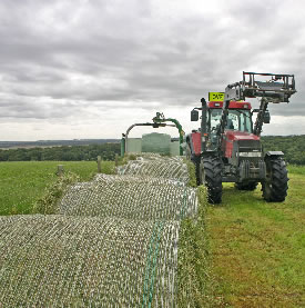 Horses preferred moist baleage, followed by a drier mix, and then hay, according to a study in Sweden.