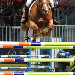 'Hickstead' World Cup goes to McLain Ward and Rothchild