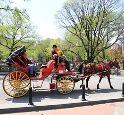 Agreement reached over future of New York's carriage horse trade