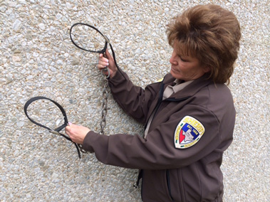 Karen Kessler holds the collars and chain which held the two dogs together.