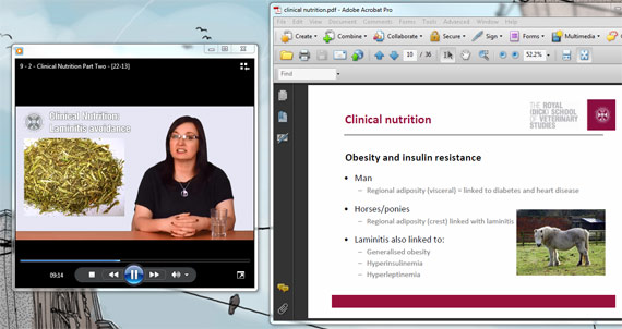 Dr Jo-Anne Murray during the second part of the final week's lecture on clinical nutrition.