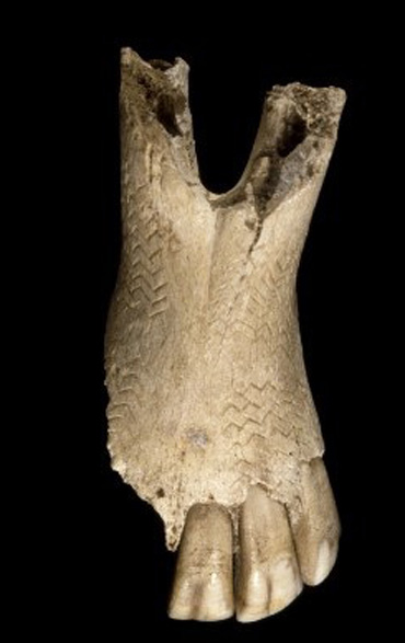 The decorated equine jaw bone, considered the oldest piece of art yet uncovered Wales. Photo: British Museum