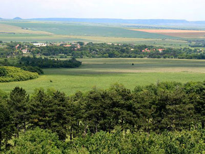View from the hill at the Kabiuk National Stud.