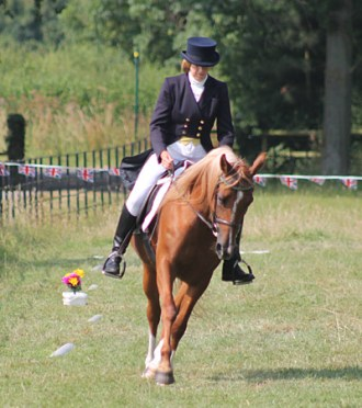 Dr Andrew Mclean is calling for a revamp of dressage judging to an evidence-based scale.