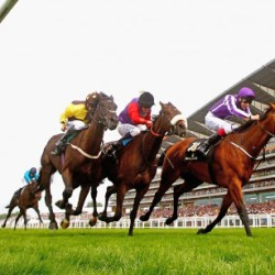 Queen's race mare loses prize money over failed drugs tests