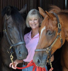 RK3DE chooses Horses and Hope as 2015 charity