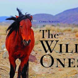 Mustang's struggle revealed in new book