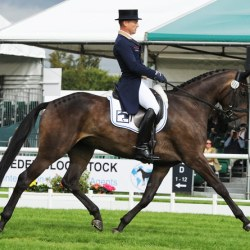 "Michael Jung: ""It's a dream to be at Burghley"""