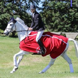 Clarke Johnstone wins NZ's National Eventing Champs