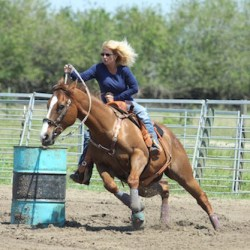 Barrel horse blazes to victory after sinus surgery