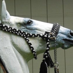 Build your own Bedouin-style bitless bridle