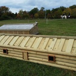 Cross-country fence auction to raise funds for safety study