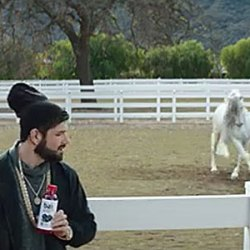 Yo, what do you think of this horse-themed commercial?