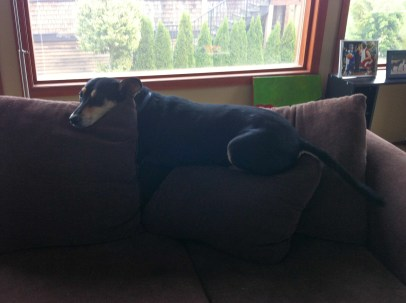 Kieffer & the Couch-3