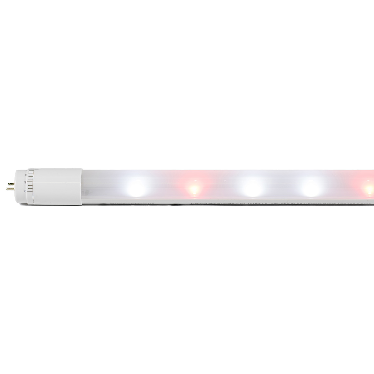 Led T8 Ge Arize T8 Led Tubes Driver