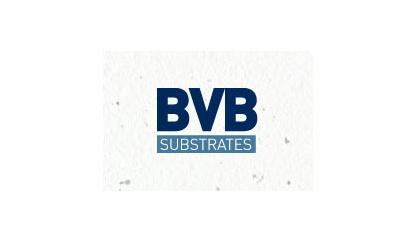 05-bvb