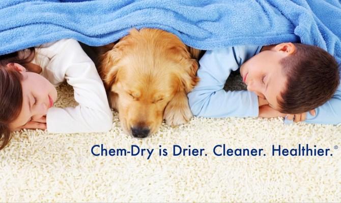 Sistema de limpieza alfombras en seco