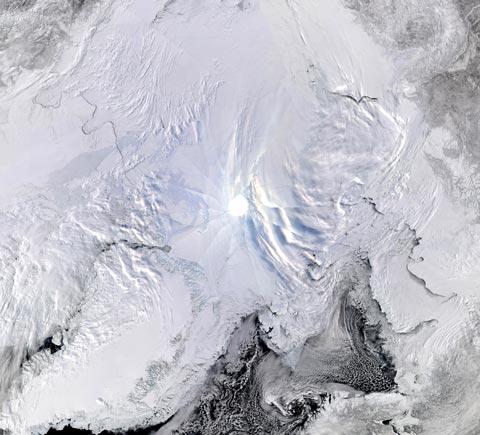 Arcticmosaicweb.jpg