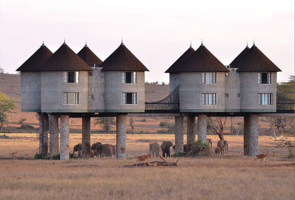 http://whenonearth.net/see-kenyas-wildlife-close-staying-sarova-salt-lick-game-lodge/