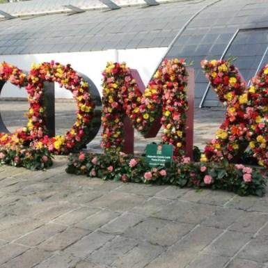 Festival Flores y Jardines FYJA 2017