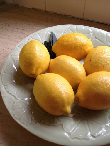 Beautiful lemons