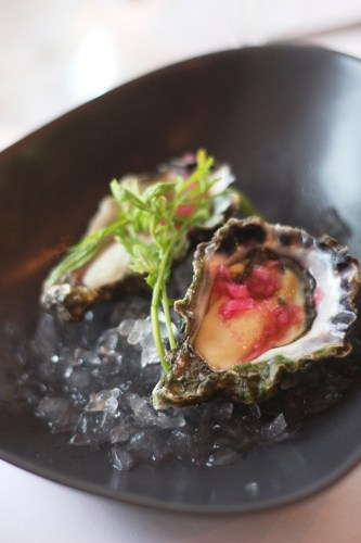 Clyde River Oysters with White Balsamic and Pink Shallots