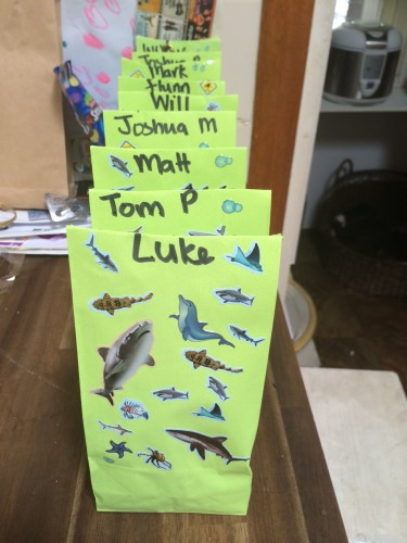 Lolly bags decorated with sharks