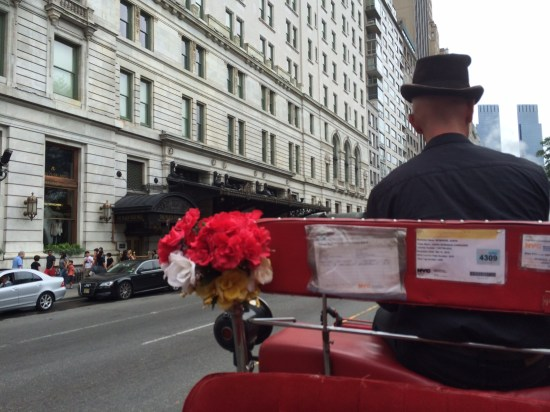 On Fifth Avenue passing the Plaza Hotel