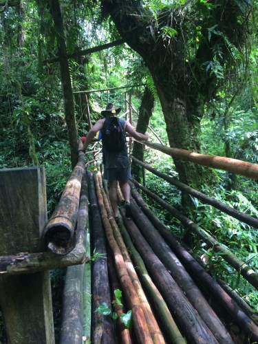 Bamboo bridge - hold on