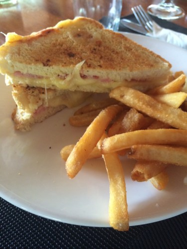 Toasted Sandwich with Fries:  900 vt