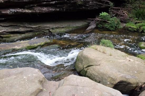 Streams of water