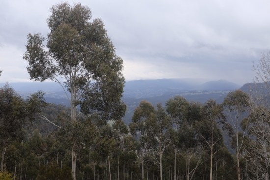 The view of the Megalong Valley