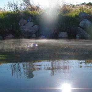 An Early Morning Soak at Willow Creek
