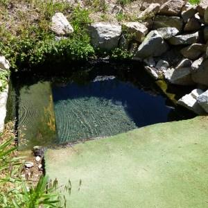 Preis Hot Springs