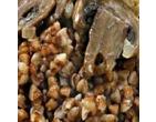 Гречневая каша с луком и грибами