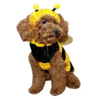 Bumble Bee Dog Costume | HoundAbout