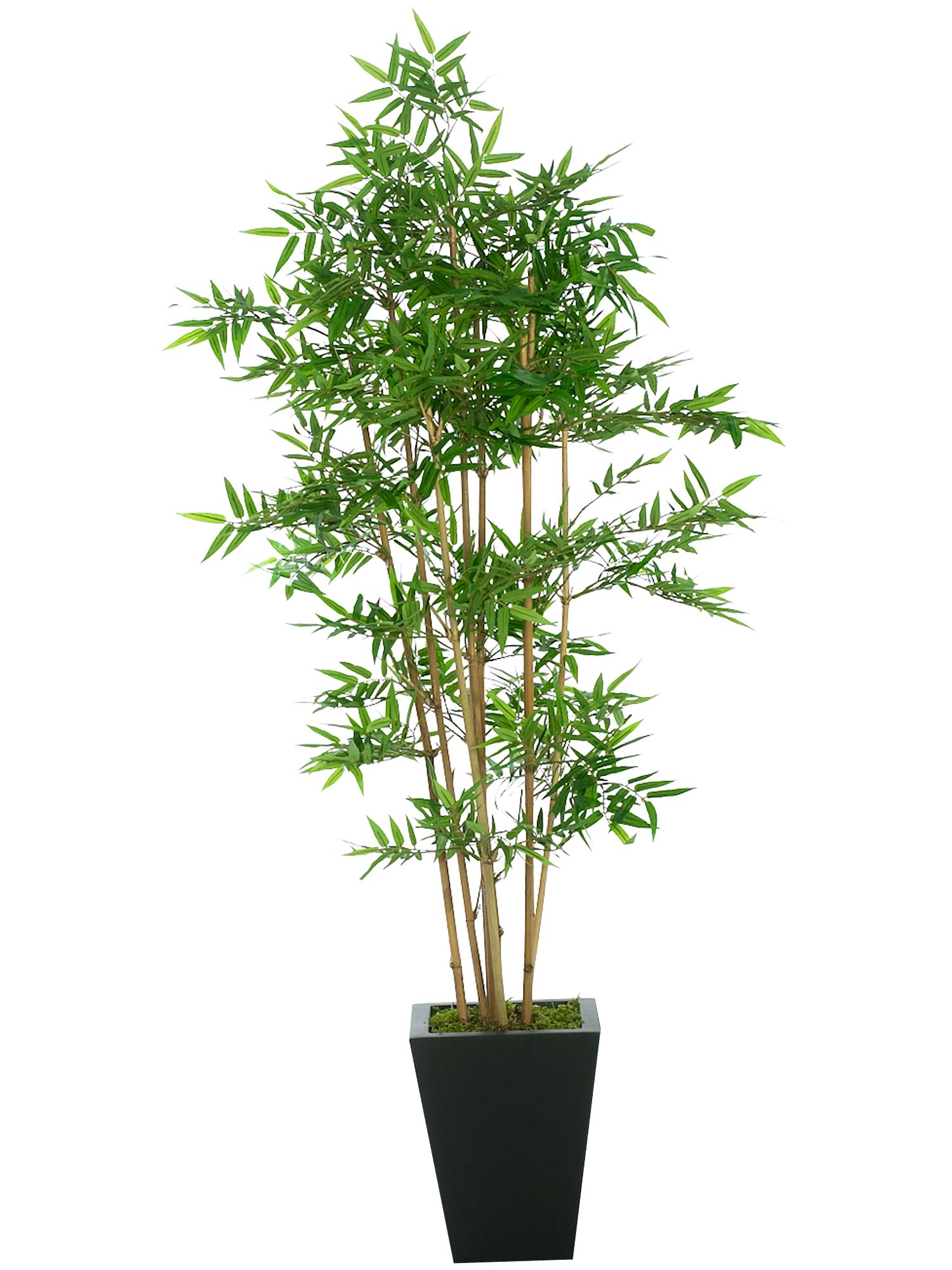 Lifelike Plants Linea Artificial Bamboo Tree Review Compare Prices Buy