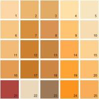 Benjamin Moore Paint Colors - Orange Palette 13 | House ...