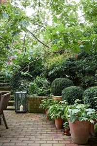 22 Shady And Fresh Gardens To Urban Jungle Ideas | House ...