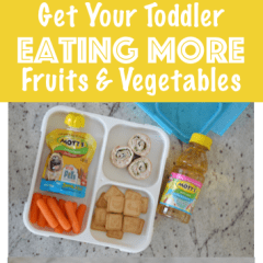 Ideas To Help Your Toddler Eat More Fruits & Vegetables