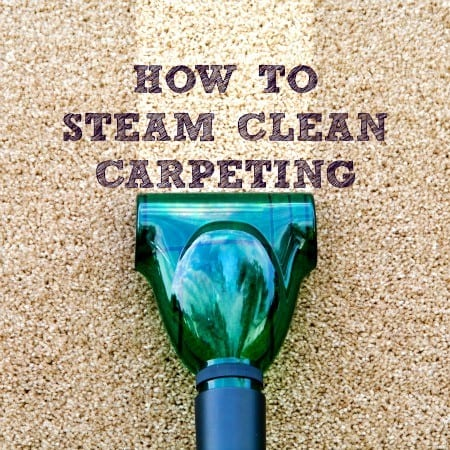 How To Steam Clean Carpeting - Housewife How-To'S®