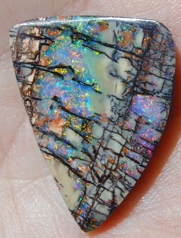 Opal's Photos